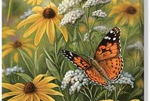 Butterflies And Blooms / Small Beauties / by Bobbie Ogilvie