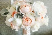 Gelin çiçeği