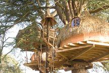 Cabanes dans les arbres / Depuis 2004, les arbres centenaires du Domaine des Ormes grandissent avec des cabanes dans les arbres. Pour les amoureux de la nature ou les aventuriers en herbe, vous trouverez forcément une cabane adaptée à vos envies.