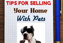 Home Selling Tips / Helpful tips to help you sell your home.