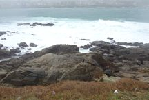 La Coruña - España