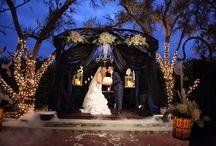 Halloween Ceremony & Reception / Brett & Maddie's Halloween wedding 10/31/14