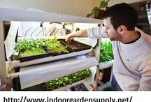 hydroponics glenwood springs / by proxpn coupon
