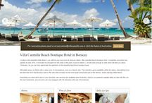 Hotel and Resorts Websites