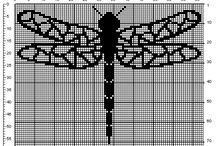 Dragonfly / Øyenstikker