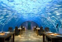 Les plus beaux restaurants dans le monde