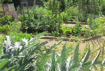 Vegetable Gardens / http://www.thewovengarden.com/