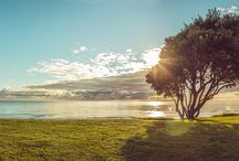 Stunning Papamoa Beach / Beautiful sights from around our beachfront Resort.