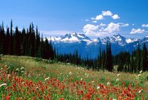 National and Provincial Parks