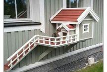 COOL animal HOME