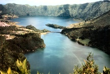 Madeira, Azores, Florida, Galapagos Islands