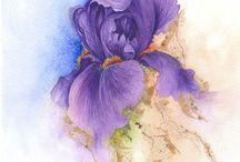 Картинки. Цветы