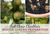 Protecting Your Garden for Winter