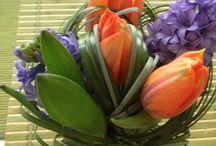 Kvetiny a dekorace / Dekorace