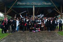 Piratas Urbanos / Piratas de todo o Brasil,