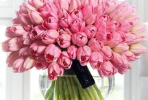 ❥ Flowers....