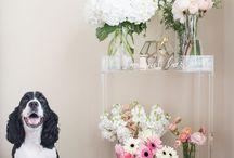 DESIGN - FLORALS & PLANTS / Gorgeous floral centerpieces and plants for the home