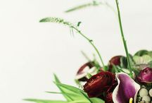 COLOR OF THE YEAR / Use MARSALA_PANTONE COLOR OF THE YEAR in your Home Decor / by Beatriz Ball Collection