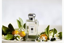 Fragrances ♥ / by Catherine