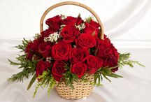 online flowers delivery in Karnal