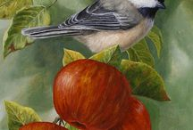 Apple's and birds to Paint