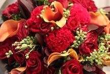 Jenny bouquet ideas