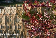 Spring in Barcelona / Barcelona filled with colours // Barcelona llena de colores // Barcelona plena de colors // #ShareBarcelona