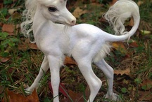 Unicorns! / My sister told me I was delusional the other day. I laughed so hard I just about fell off my unicorn! / by Whitney Christmas