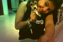 THOMAS / Mi lindo Beagle
