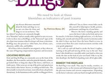 Informational articles by Dr. Pat / Articles written by me, Dr. Patricia Bona, chiropractor, avid equestrian, dancer, lover of life.