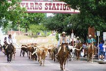The Heartland (Dallas/FW) / by Callie Branch
