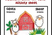 Educational Crafts  / Crafts used to teach