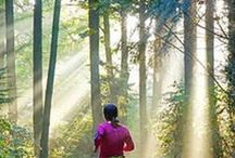 Trail Running Info