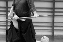 Hakko Denshin Ryu Jujutsu