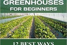Glasshouse Gardening