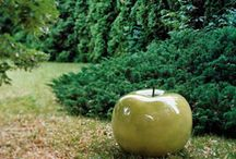 idees pour le jardin