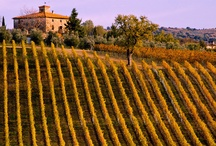 NEW in 2014: Maremma, Italy / by Country Walkers