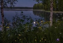 Suomen Luonto / Finnish Landscape