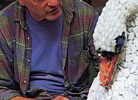 kaffe fassett / Amerikaanse textielontwerper. Hij ontwerpt voor breiwerk,haakwerk,patchwork en aardewerk.
