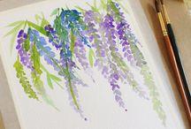 Aqua colours