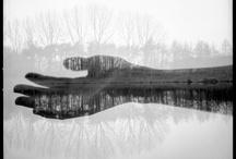 Photography / by Emanuela Cavallo