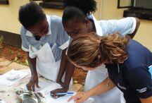 Global Volunteer Experience