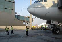 Airline pilot / airline pilot