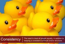 Consistency Genius / CliftonStrengths Consistency Hacks