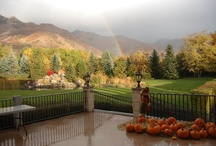 Utah.... where I live! beautiful!!! / by Camille Plum