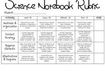 Science- Notebooking / by Ms. Holle