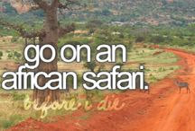 African safari / An African safari is my dream vacation and has been for years. It finally happened - Botswana was the destination in March 2015. Best vacation ever?? :-) Definitely not my last safari ... !! :-)