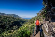 Madeira / This verdant island is known for its spectacular gardens, while the mountain scenery makes it ideal for walking holidays. And for chic bars and boutiques, there's the capital, Funchal.
