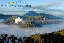 Bromo Tour Package / Bromo Tour Package