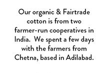 Cotton (Seed to Garm) / Why not have a peek at where our fluffy stuff comes from?